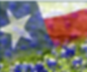 flag with blubonnetts.PNG