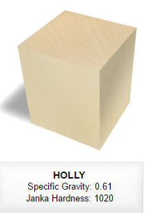 062 HOLLY.png