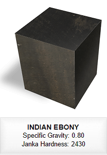 066 INDIAN EBONY.png
