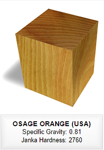 090 OSAGE ORANGE (USA).png