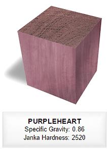 095 PURPLEHEART.png