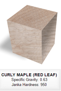 036 CURLY MAPLE (RED LEAF).png