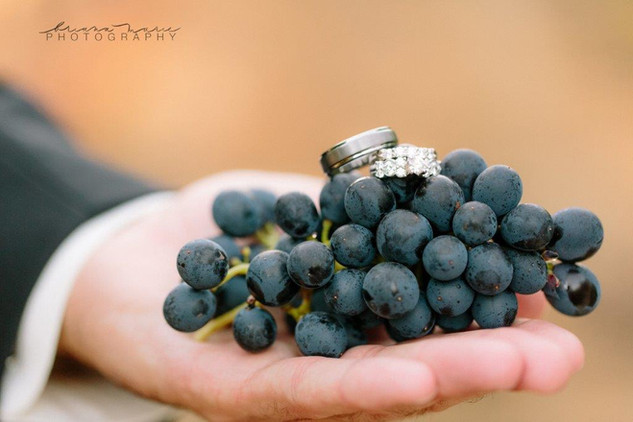 Briana Marie Photography Handful of vineyard grapes with wedding rings on top