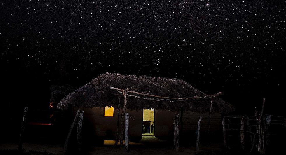Pisco de Luz sob as estrelas