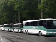 9 Buses in Hanmer 2019.jpg