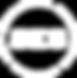 SES Logo 3.png