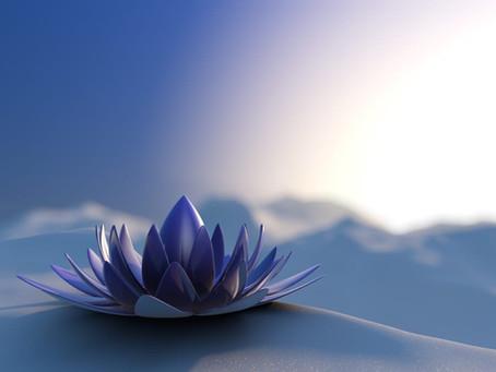 GRATITUDE: 3 keys to master calm amidst chaos