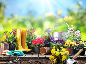 SPRING EQUINOX 2018 – The era of reinvention  & the 7 perspectives to change your world