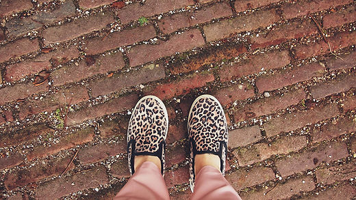 Chaussures Animal Print