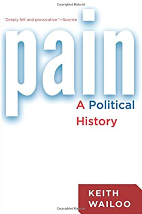 Pain A Political History