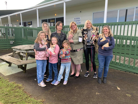 Meet the Auckland Chapter of the Kitaco Family
