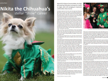 Nikita steals the limelight again with NZ Dog World feature