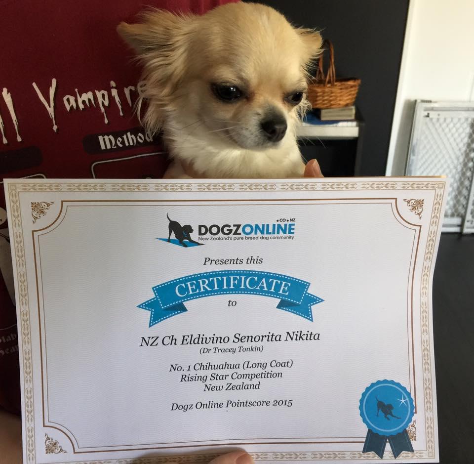 Nikita wins NZ Rising Star 2015