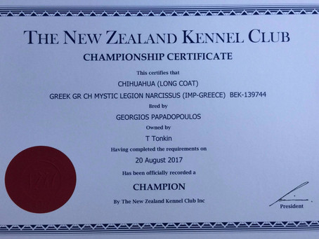 Narci is now officially an NZ Champion as well as a European Champion