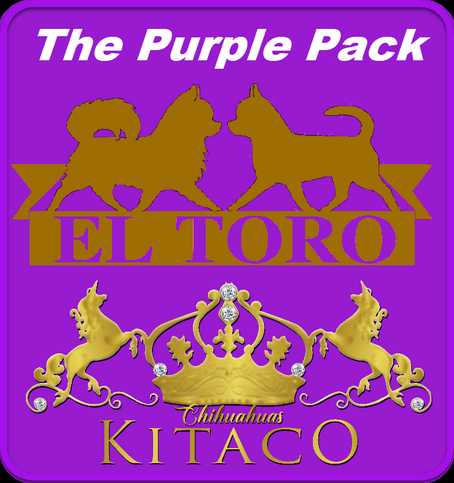 Team Kitaco and Team El-Toro join forces for the Nationals to form the nigh-unbeatable Purple Pack!