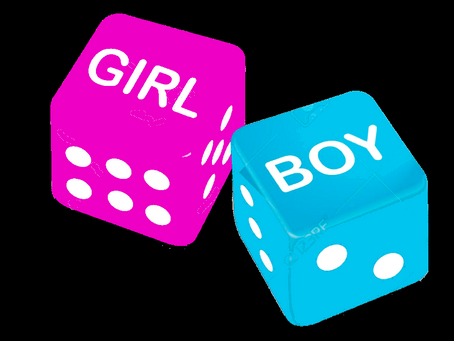 5 Myths about Boy v Girl Chihuahuas Explained