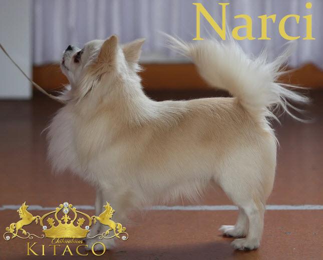 Narciname