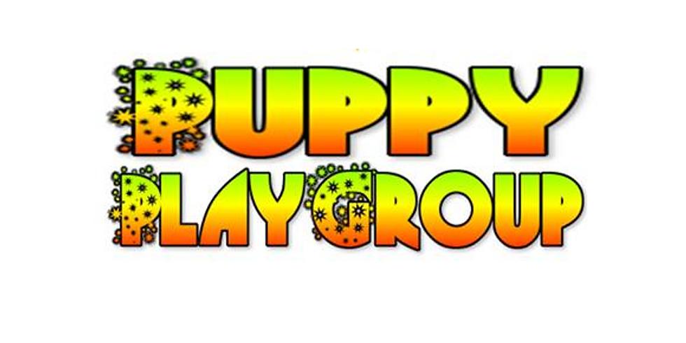 Puppy Playgroup