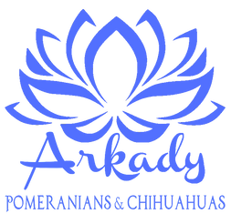 Arkady Logo 2.png