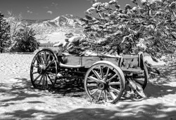 Snowy Wagon_bw_s
