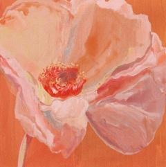 Poppy #1 05