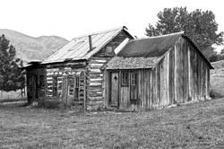Old Homestead_s