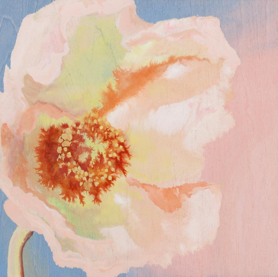 Poppy #2 (pink_blue) 08
