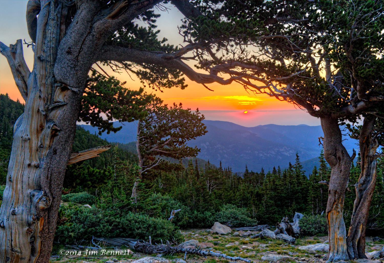 Mt Goliath Sunrise_s