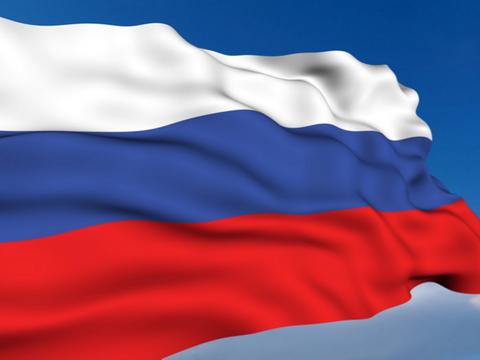 О российской демократии. Мнение Дмитрия Кочегурова