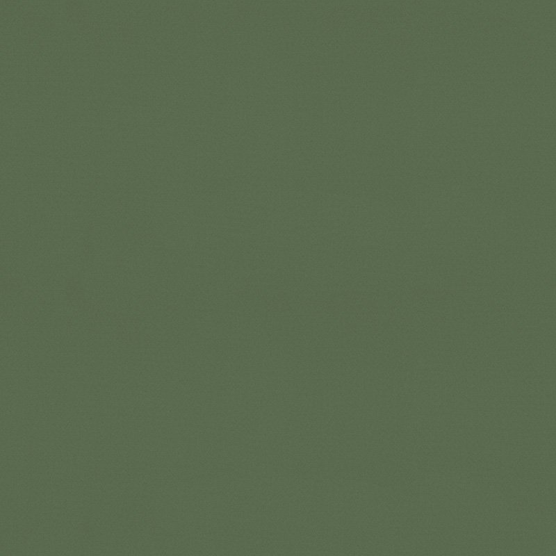 Palette_Forest_Green