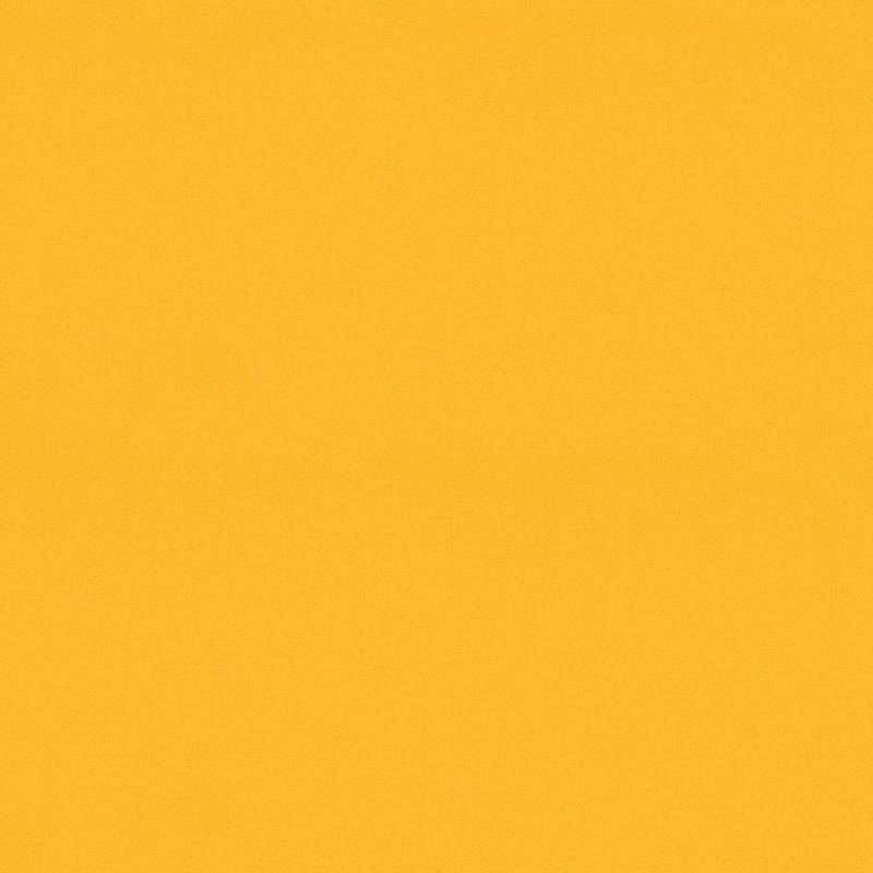 Palette_Mango_
