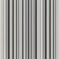 Spectrum_Silver