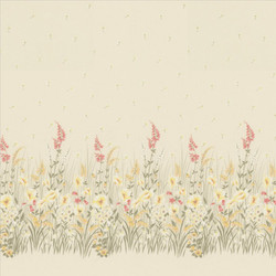 Morning_Glory_Blossom_
