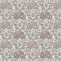 Hydrangea_Grape_
