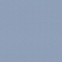 Polygon_asc_Azure