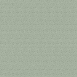 Polygon_asc_Emerald_1