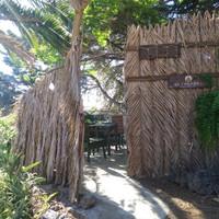 entrance la palma glamping