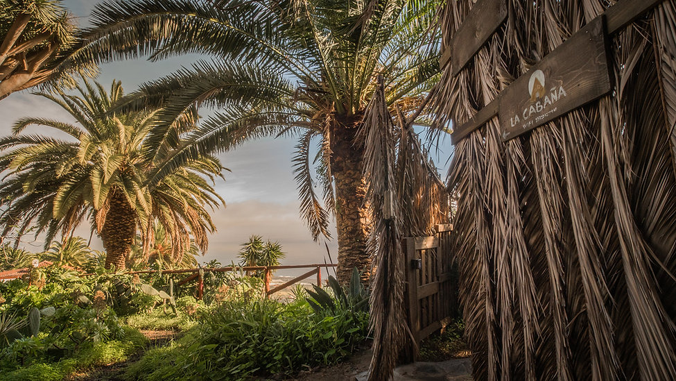 La Palma Glamping Garden.jpg