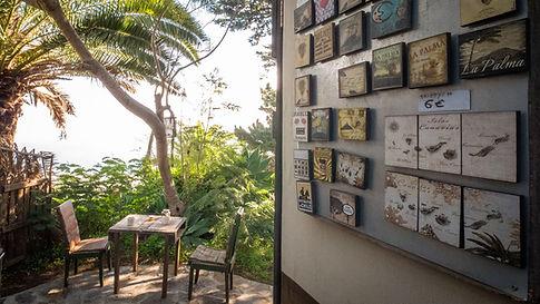 La palma glamping Canary island Kitchen