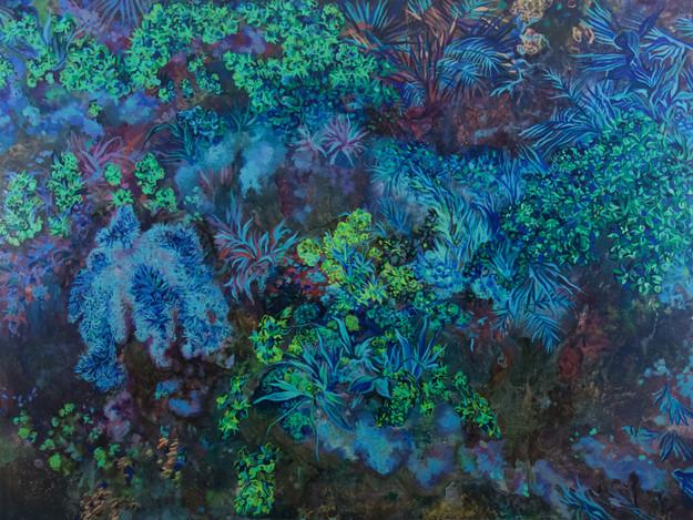 Rainforest Dusk