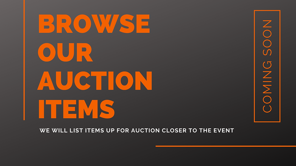 auction  items.png