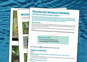learning-session-thumb-wonderful-wetland