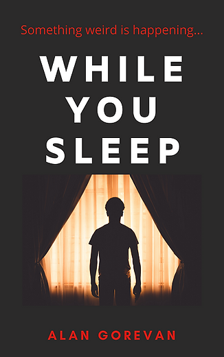 While You Sleep - Copy.png