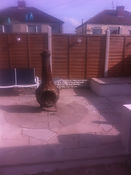 Sheffield Fencing and Decking