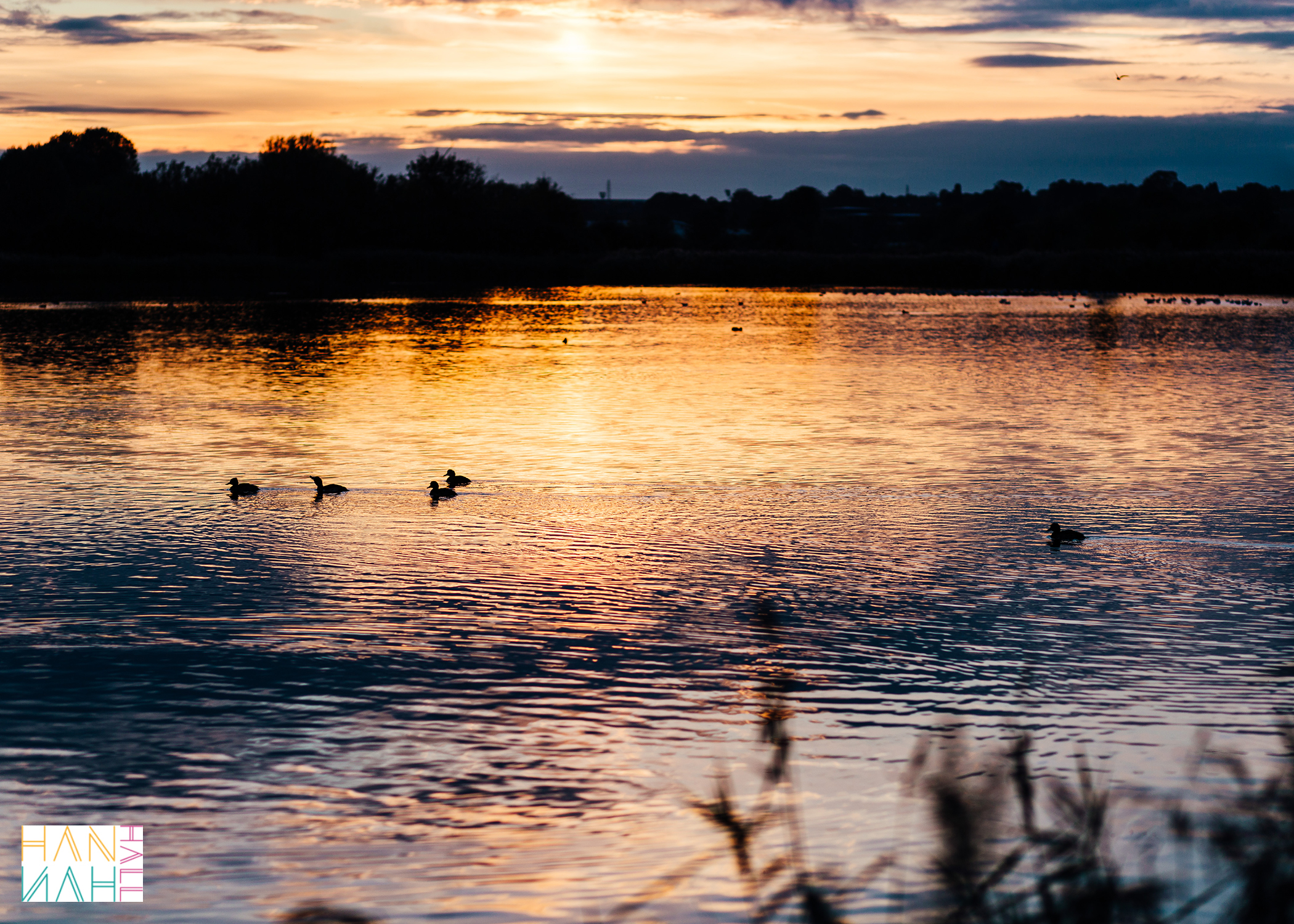 Stanwick Lakes at Sunset