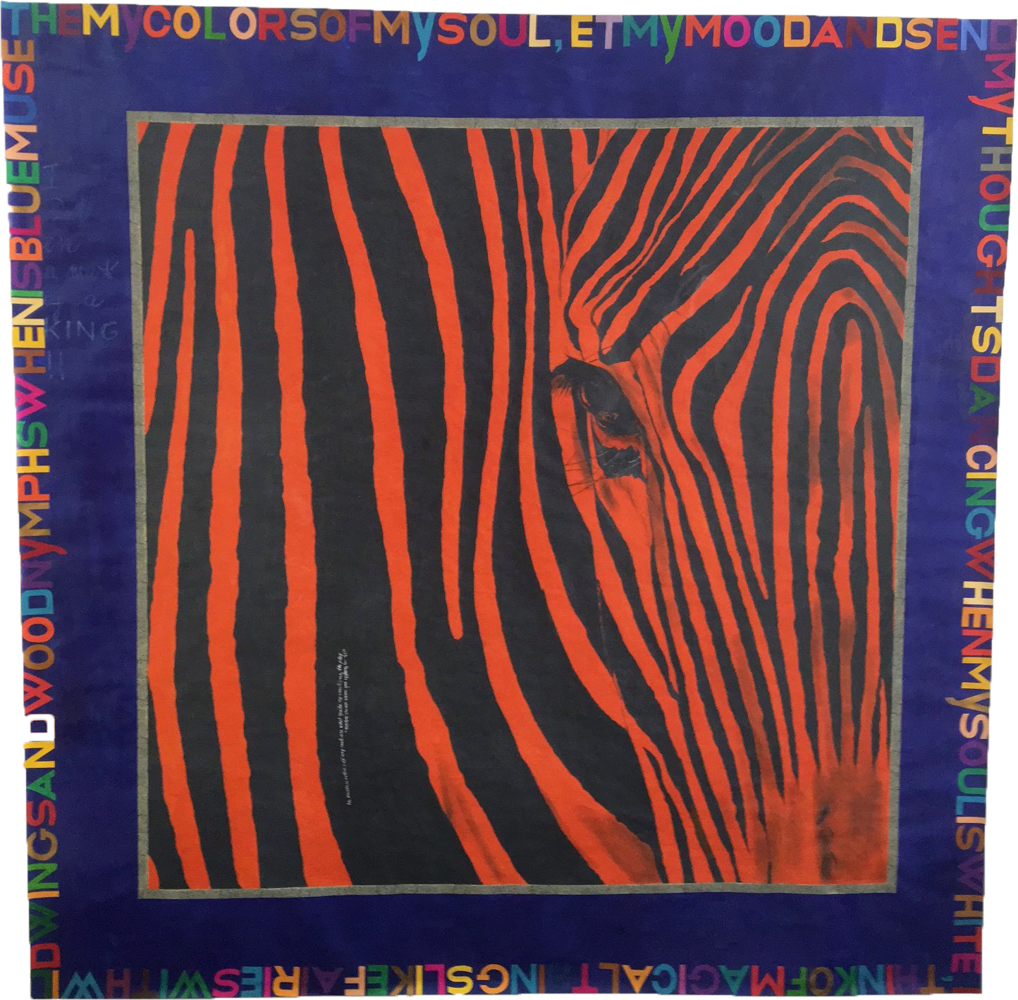 Zebra, Duccio Berti