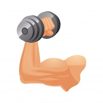 How to Build More Muscle in Our Body?