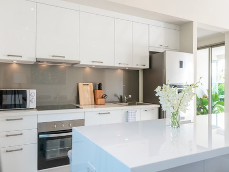 A Pest-Free Home Often Starts With a Clean Kitchen