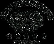 logo_mastorrent.png