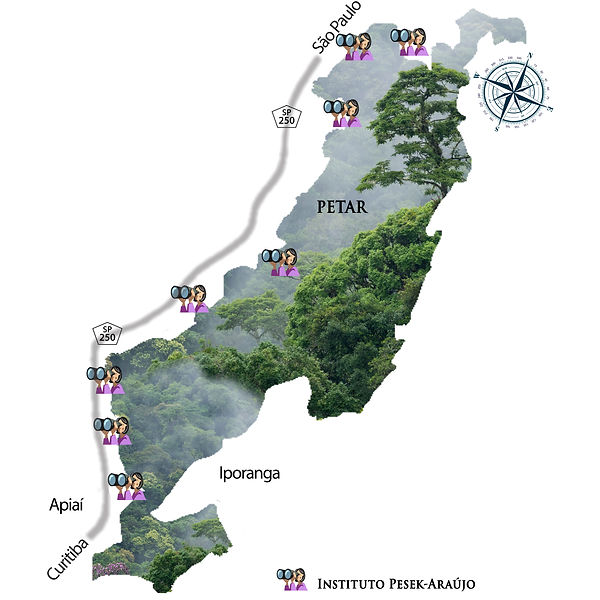 Mapa Instituto Pesek.jpg